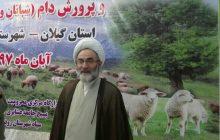 نقش مهم چوپانان در تولیدات اقتصادی کشور/ آرامش و سلامتی موجود در بین شبانان تنها در پیامبران بوده است
