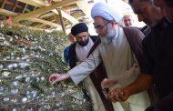 مسئولان زمینه توسعه نوغانداری کشاورزان گیلانی را تسهیل کنند/واردات تخم نوغان برازنده متخصصان ایرانی نیست/ از مسئولان می خواهیم دست واسطه ها در صنعت نوغانداری را کوتاه کنند