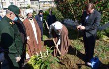 کاشت یک اصله نهال میوه توسط نماینده ولی فقیه در گیلان به مناسبت روز درختکاری + تصاویر
